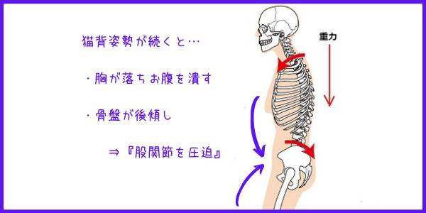 潰している股関節を広げる